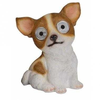Tuinbeeld Chihuahua hond solar verlichting